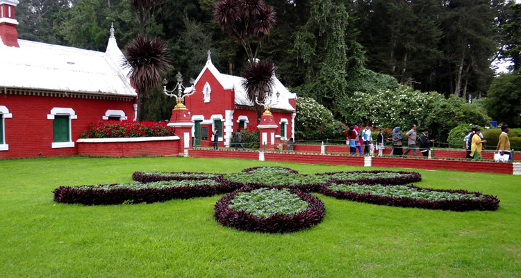 1 Day Ooty Trip from Coimbatore Tour  Package with Ooty Botanical Garden