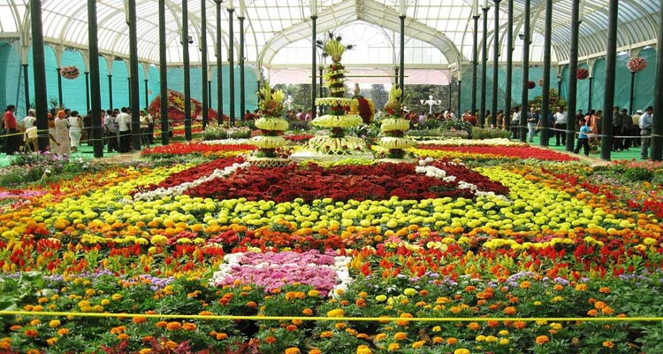 1 Day Ooty Trip from Coimbatore Package with with Ooty Rose Garden