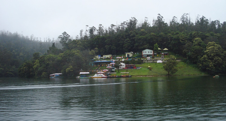 1 Day Ooty Pykara and Mudumalai Tour Local Sightseeing Package