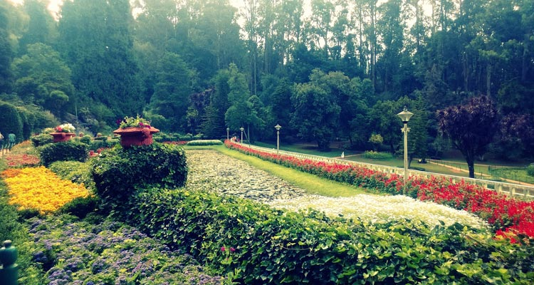 1 Day Ooty Town Tour Local Sightseeing Package with Botanical Gardens