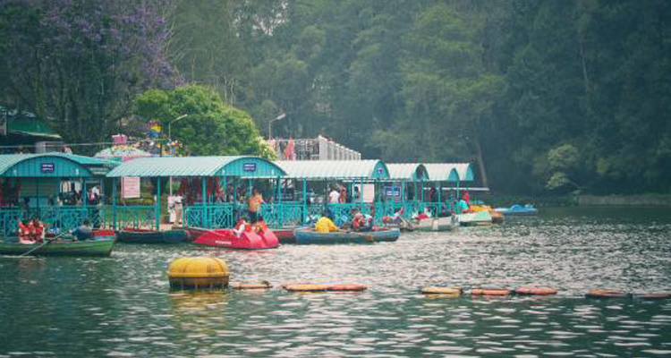 1 Day Ooty Town Tour Local Sightseeing Package with Ooty Honeymoon Boat House / Lake