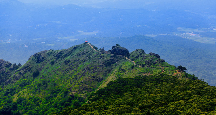 1 Day Ooty Trip from Mysore Tour  Package with Needle Rock View Point