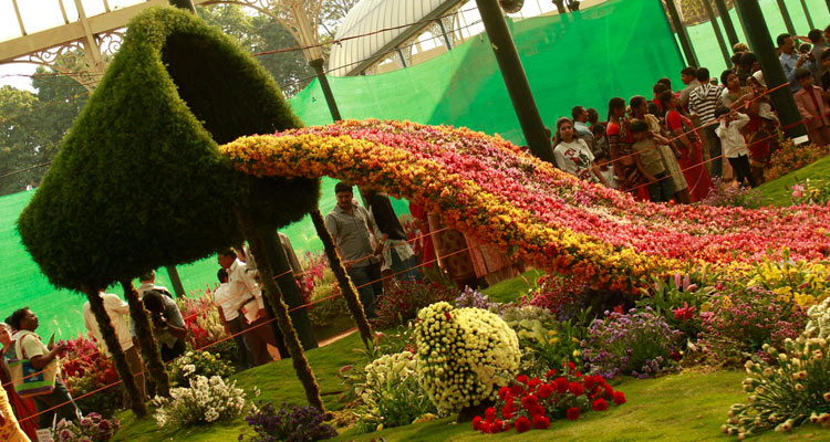 1 Day Ooty Trip from Mysore Tour Package with Ooty  Rose Garden