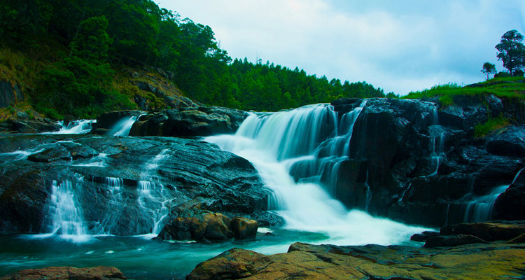 1 Day Ooty Pykara Tour Local Sightseeing Package with Pykara Waterfalls